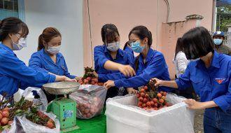 Tuổi trẻ Đoàn khối Trà Vinh hỗ trợ nông dân Bắc Giang trên 3,4 tấn vải thiều